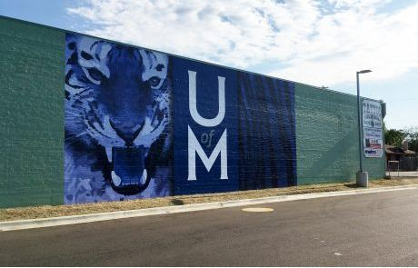Blue Tiger Vinyl Wall Decal Highland Strip