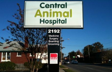 Central Animal Hospital Lighted Pole Sign Revision