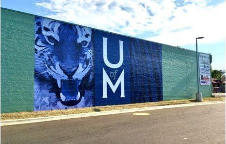 Vinyl Wall Wrap UM Tigers